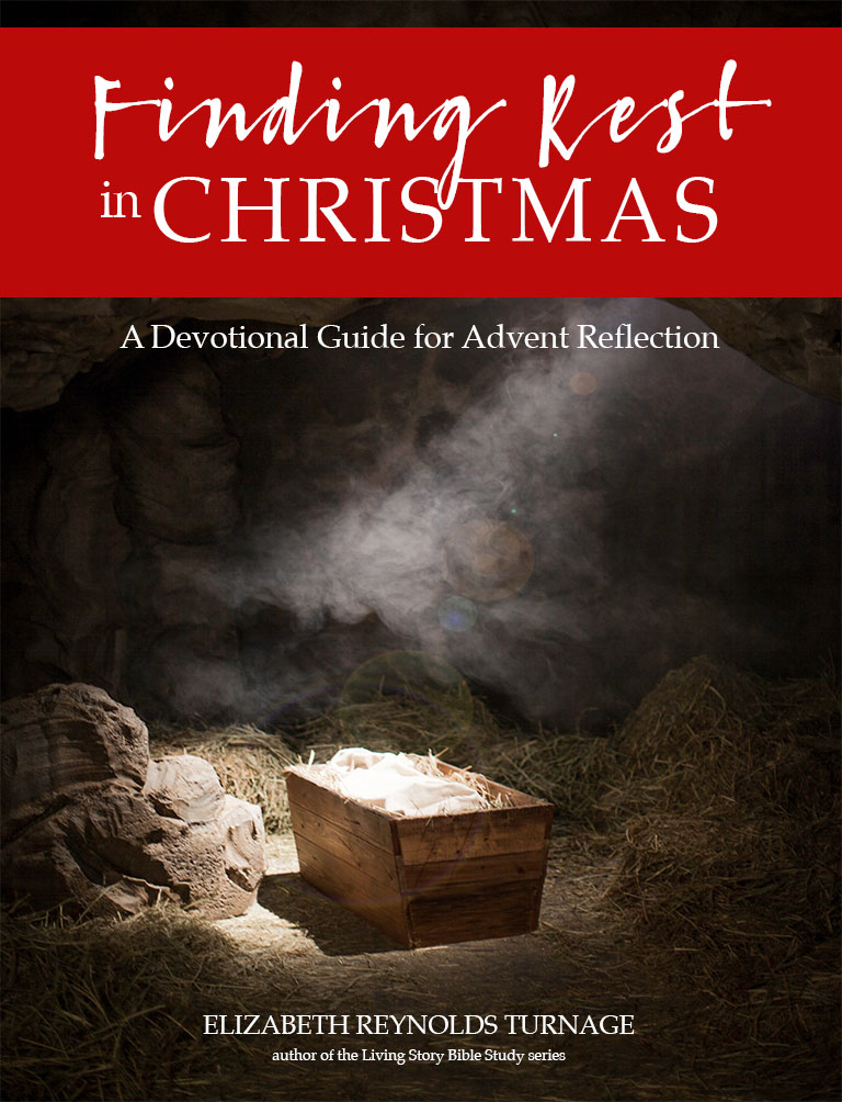 Finding Rest in Advent Guide PDF Book